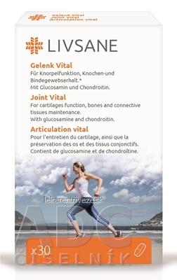 LIVSANE Podpora pre zdravé kĺby tbl 1x30 ks