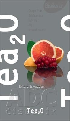 Biogena Tea2O Grep & Schizandra bylinný čaj 20x1,7 g (34 g)