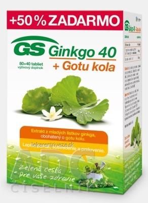 GS Ginkgo 40 + Gotu kola tbl 80+40 zadarmo (120 ks)