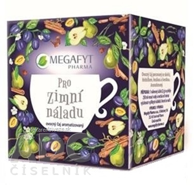 MEGAFYT Na zimnú náladu ovocný čaj 10x2 g (20 g)