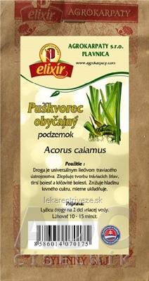 AGROKARPATY PUŠKVOREC OBYČAJNÝ podzemok bylinný čaj 1x30 g