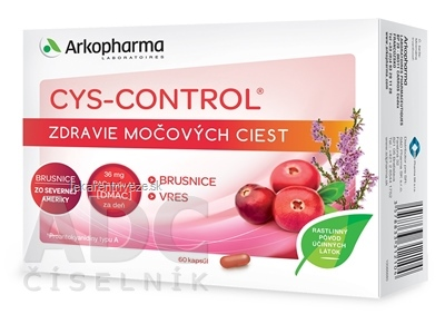 CYS-CONTROL cps 1x60 ks